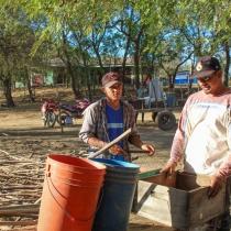 Al igual que con las cooperativas dedicadas a la pesca, se fortaleció a cooperativas de apicultores, con las cuales se logró mejorar el manejo de 180 colmenas.