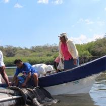 Un total de 13 cooperativas del noroeste de Nicaragua aumentaron sus ingresos económicos innovando en la producción de pescado, conchas negras, miel de abeja y servicios turísticos,