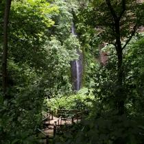 Refugio de Vida Silvestre de El Chocoyero