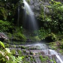 El Refugio de Vida Silvestre de El Chocoyero abastece de agua potable a las comunidades aledañas (fotografía: AECID).
