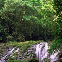 Reserva biológica Indio Maíz (Río San Juan)