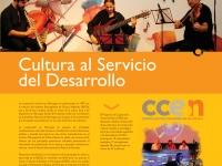 2010 CULTURA Y DESARROLLO
