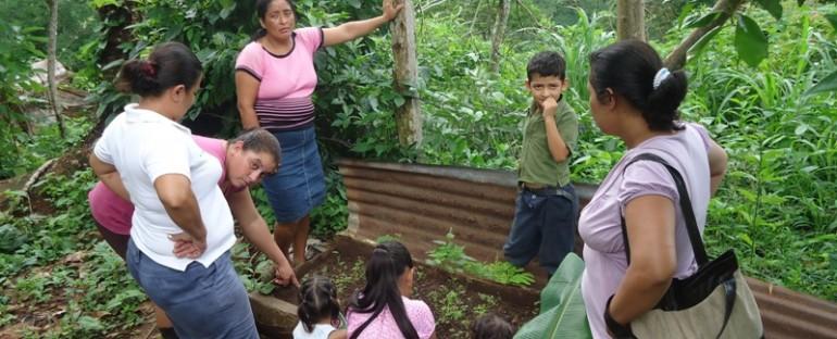 La Agricultura Familiar: Pilar fundamental de la Soberanía y Seguridad Alimentaria y Nutricional.