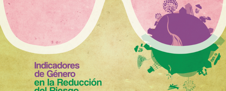 Presentación de Indicadores de Género en la Reducción del Riesgo de Desastres
