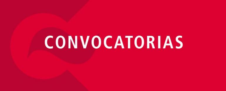 """Convocatoria a Concurso (Consultores Individuales) """"Contratación de un  Supervisor de los Indicadores de Salud Animal-Programa Bovinos-IPSA"""
