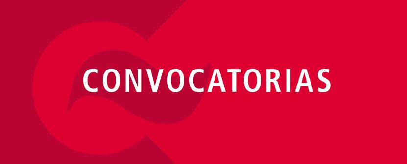 Convocatoria de subvenciones para acciones de cooperaci n for Convocatorias para profesores 2016